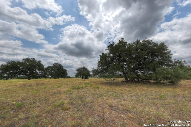 LOT 34 AND 35 Little Sorrel Way, Bandera, TX 78003 (MLS #1263305) :: Neal & Neal Team