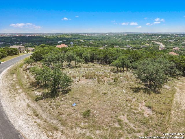 25717 Echo Mountain, San Antonio, TX 78260 (MLS #1263472) :: The Castillo Group