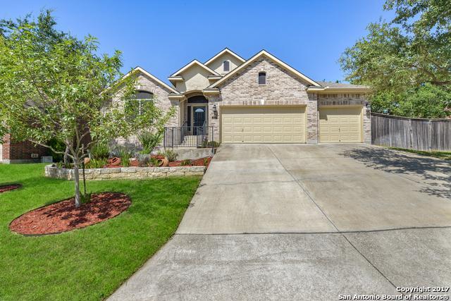 423 Sand Ash Trl, San Antonio, TX 78256 (MLS #1263807) :: Tami Price Properties, Inc.
