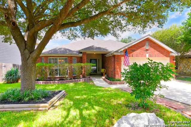 5111 Stormy Autumn, San Antonio, TX 78247 (MLS #1263809) :: Exquisite Properties, LLC