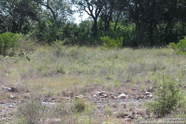 TBD LOT 311 County Road 2753, Mico, TX 78056 (MLS #1263817) :: Exquisite Properties, LLC