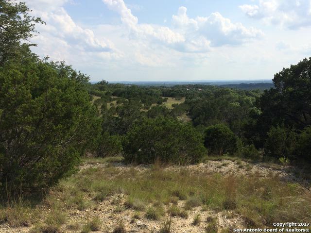 171 Bluebonnet Breeze, Canyon Lake, TX 78133 (MLS #1264213) :: Neal & Neal Team