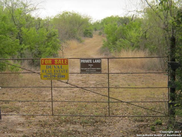 5745 County Road 101, Freer, TX 78357 (MLS #1264358) :: The Castillo Group