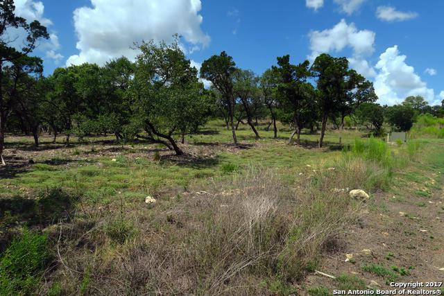 20711 Blue Quail Run, San Antonio, TX 78256 (MLS #1264560) :: Tami Price Properties, Inc.
