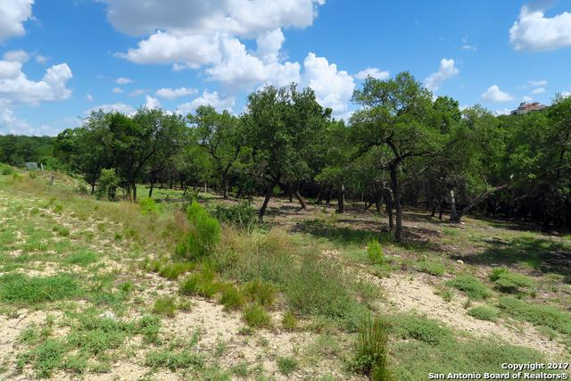 20331 Bobwhite Run, San Antonio, TX 78256 (MLS #1264566) :: Tami Price Properties, Inc.
