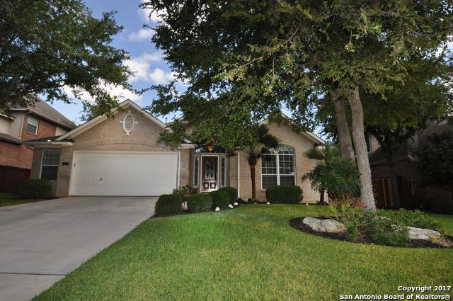 418 Cypress Trl, San Antonio, TX 78256 (MLS #1264595) :: Tami Price Properties, Inc.