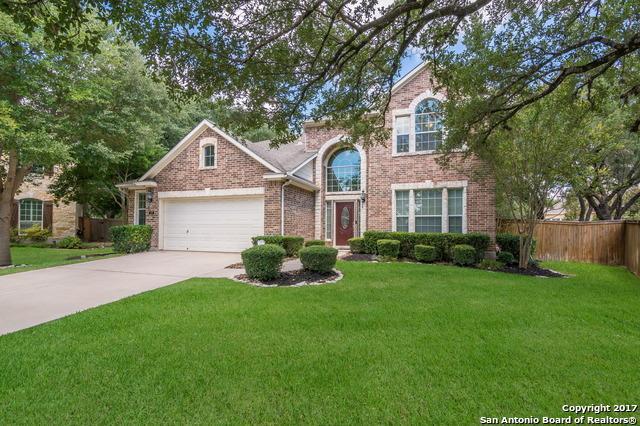 19 Firethorn Trl, San Antonio, TX 78256 (MLS #1264718) :: Tami Price Properties, Inc.