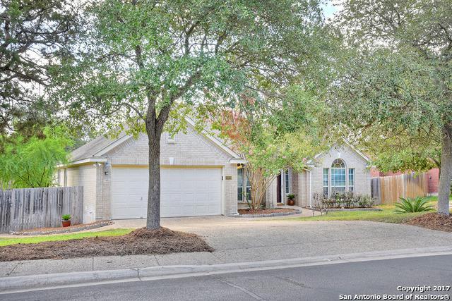 20826 Wind Spgs, San Antonio, TX 78258 (MLS #1264765) :: Tami Price Properties, Inc.