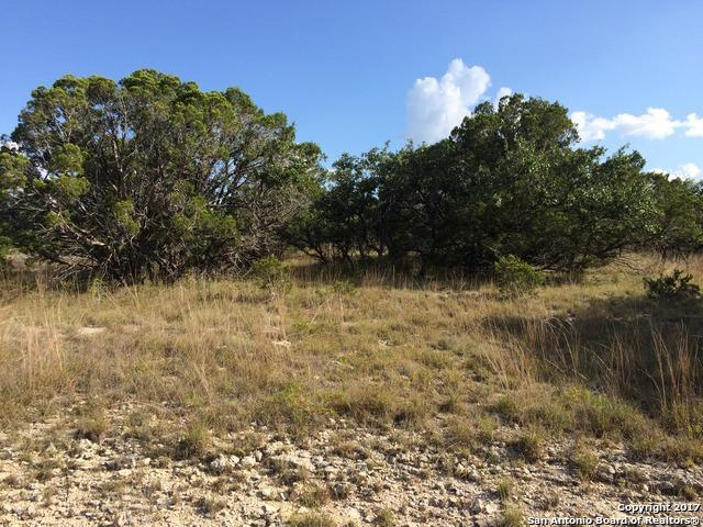 657 Primrose Path, Canyon Lake, TX 78133 (MLS #1264946) :: Tami Price Properties, Inc.