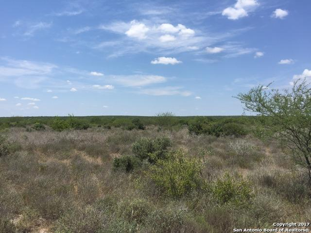 0000 Old Seven Sisters Rd - Cr 101, Freer, TX 78357 (MLS #1265683) :: The Castillo Group