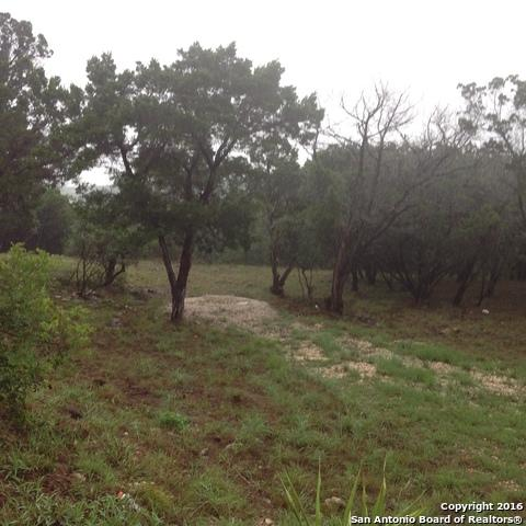 PR 1703, Helotes, TX 78023 (MLS #1267449) :: Alexis Weigand Real Estate Group