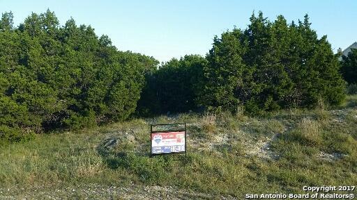126 Comal Cres, Bulverde, TX 78163 (MLS #1267883) :: Alexis Weigand Group