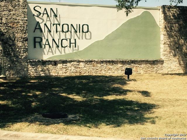 11219 Condor Pass, San Antonio, TX 78023 (MLS #1269295) :: Alexis Weigand Group