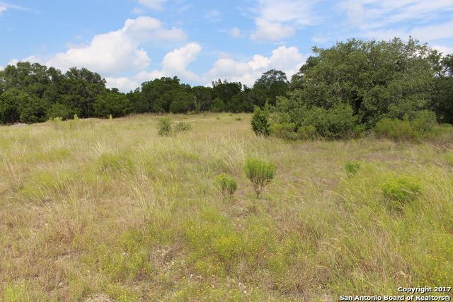 1626 Lake Ridge Blvd, Canyon Lake, TX 78133 (MLS #1269625) :: Ultimate Real Estate Services
