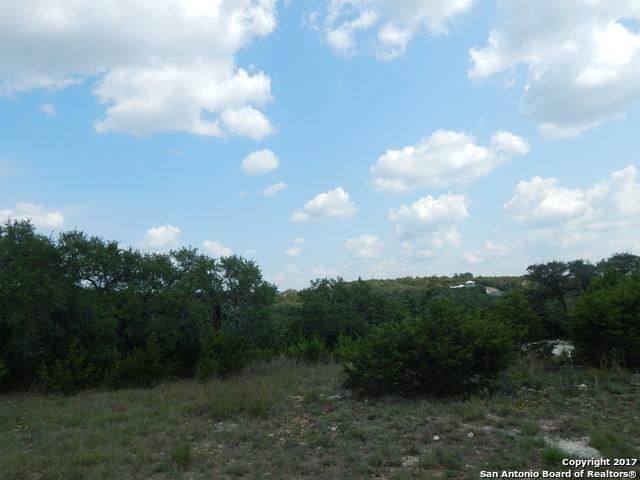 223 George Strait, Canyon Lake, TX 78133 (MLS #1269688) :: Ultimate Real Estate Services