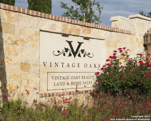 1439 N Merlot, New Braunfels, TX 78132 (MLS #1269790) :: Ultimate Real Estate Services