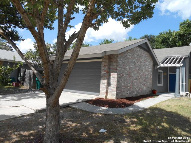 9830 Twin Saddles, Converse, TX 78109 (MLS #1269891) :: Alexis Weigand Group