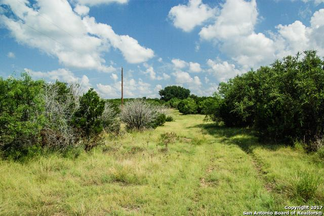 12055A Ranch Rd 1691, Sonora, TX 76950 (MLS #1270172) :: Ultimate Real Estate Services
