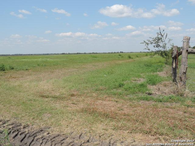 24 ACRES Out Of 7913 Fm 541 E, Falls City, TX 78113 (MLS #1270471) :: Ultimate Real Estate Services