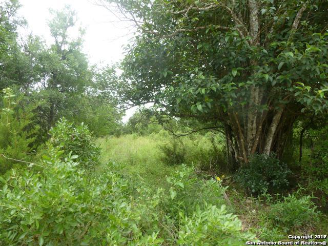 LOT 12 Ventura, Selma, TX 78154 (MLS #1270545) :: The Suzanne Kuntz Real Estate Team