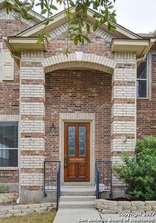 109 Springtree Cv, Cibolo, TX 78108 (MLS #1270580) :: The Suzanne Kuntz Real Estate Team