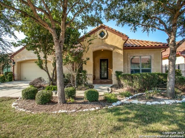 3411 Albizi Way, San Antonio, TX 78258 (MLS #1270593) :: The Castillo Group