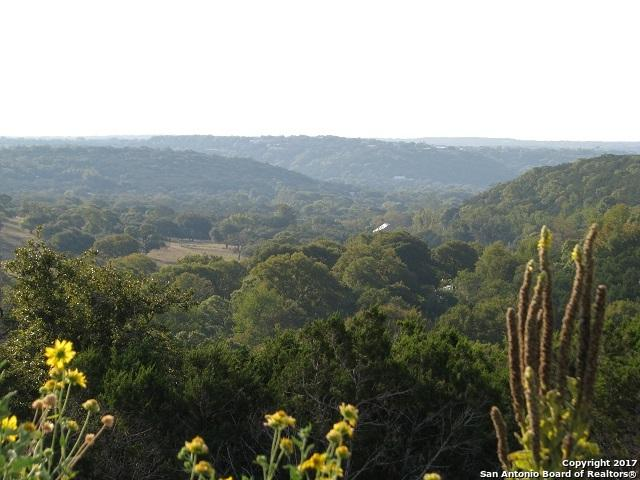 Address Not Published, Kerrville, TX 78028 (MLS #1270911) :: Ultimate Real Estate Services