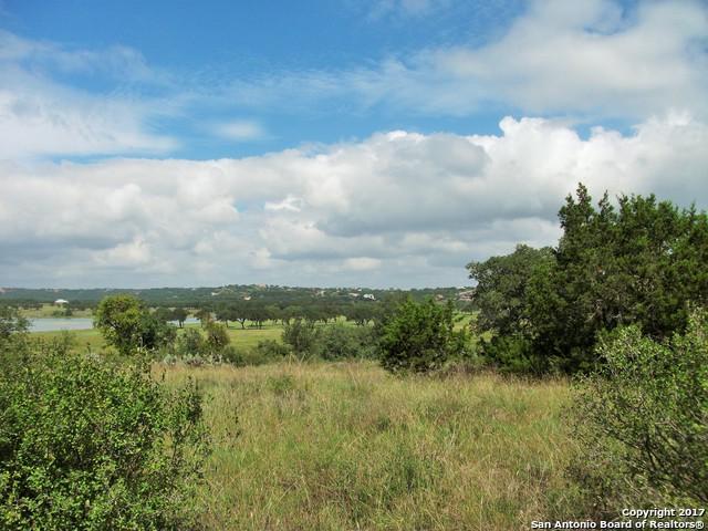 2022 San Jose Way, Canyon Lake, TX 78133 (MLS #1272450) :: Magnolia Realty
