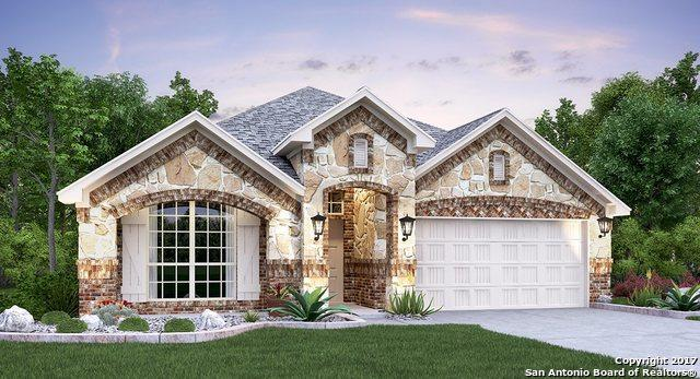 31869 Cast Iron Cove, Bulverde, TX 78163 (MLS #1272875) :: Ultimate Real Estate Services