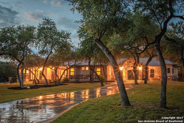 10107 Steinig Link, New Braunfels, TX 78132 (MLS #1272915) :: Exquisite Properties, LLC