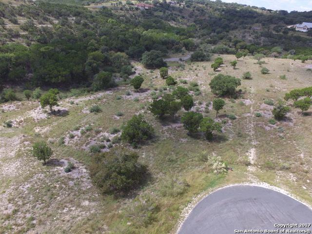 1017 & 1023 Comanche Rdg, New Braunfels, TX 78132 (MLS #1273185) :: Alexis Weigand Real Estate Group