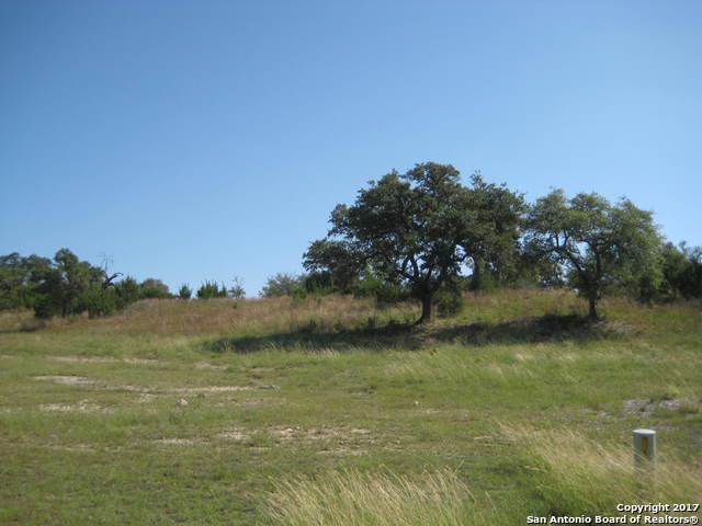 2456 George Pass, Canyon Lake, TX 78133 (MLS #1273237) :: Magnolia Realty