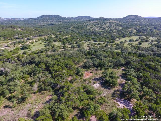 11010 Caliza Blf, Boerne, TX 78006 (MLS #1273281) :: The Castillo Group