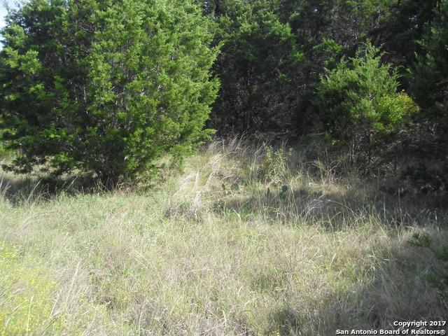 0 Fm 3424, Canyon Lake, TX 78133 (MLS #1273539) :: Erin Caraway Group