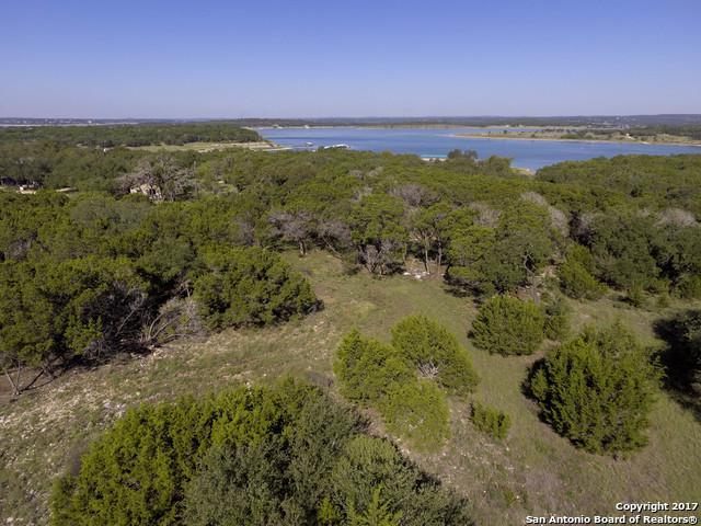 312 Jacobs Creek Park Rd, Canyon Lake, TX 78133 (MLS #1273589) :: Neal & Neal Team
