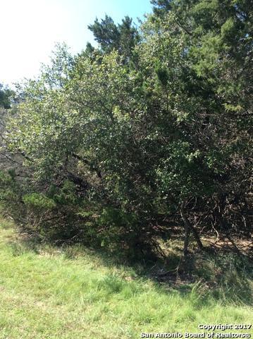 26737 Timberline Dr, San Antonio, TX 78260 (MLS #1274307) :: ForSaleSanAntonioHomes.com