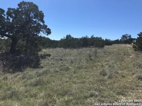 1382 Primrose Path, Canyon Lake, TX 78133 (MLS #1274488) :: Neal & Neal Team