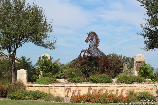 14007 Panther Vly, Helotes, TX 78023 (MLS #1274533) :: Neal & Neal Team