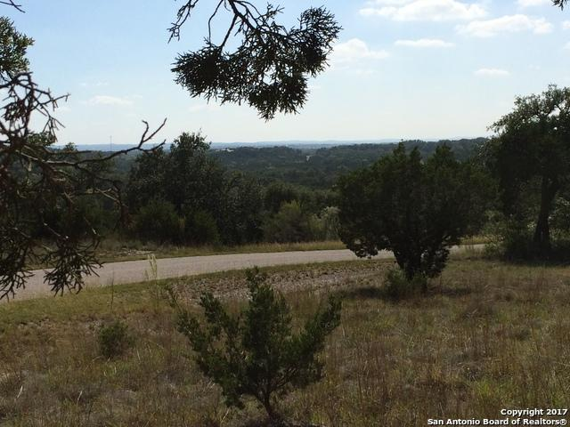 224 Magnolia Mdw, Canyon Lake, TX 78133 (MLS #1274729) :: Ultimate Real Estate Services