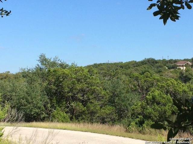 206 Magnolia Mdw, Canyon Lake, TX 78133 (MLS #1274739) :: Ultimate Real Estate Services