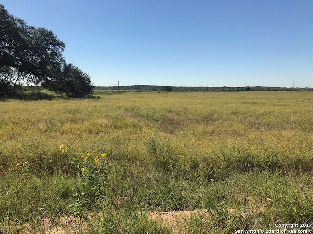 16411 County Road 350, Elmendorf, TX 78112 (MLS #1274793) :: Alexis Weigand Real Estate Group