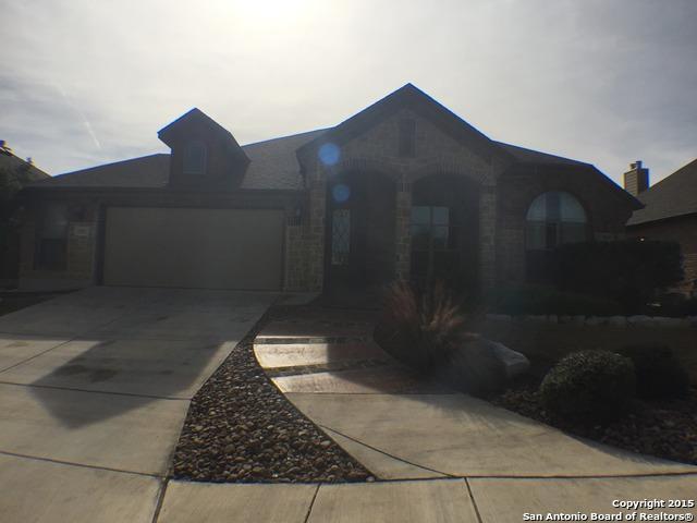 11522 Massive Mt, Helotes, TX 78023 (MLS #1274803) :: Neal & Neal Team