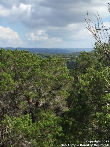 1516 White River Rd, Canyon Lake, TX 78133 (MLS #1274807) :: Magnolia Realty
