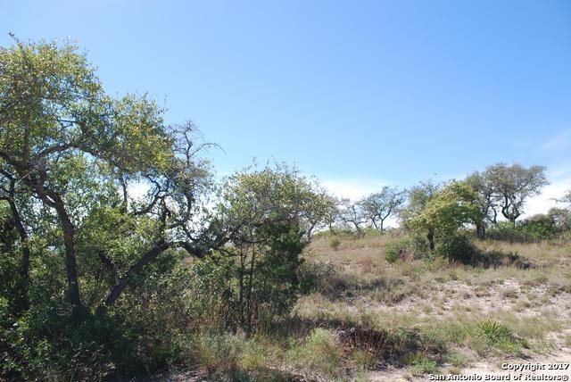 10110 Ivory Canyon, San Antonio, TX 78255 (MLS #1275081) :: Tami Price Properties, Inc.