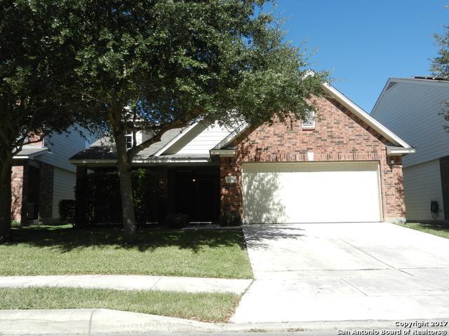 9955 Gazelle Frst, San Antonio, TX 78251 (MLS #1275196) :: Tami Price Properties, Inc.