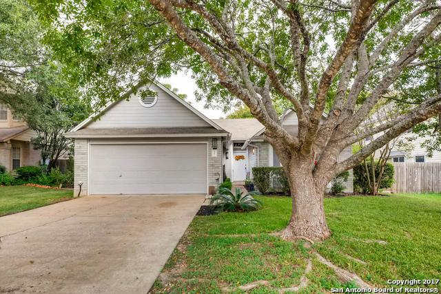 341 Scotch Rose Ln, Cibolo, TX 78108 (MLS #1275331) :: The Castillo Group