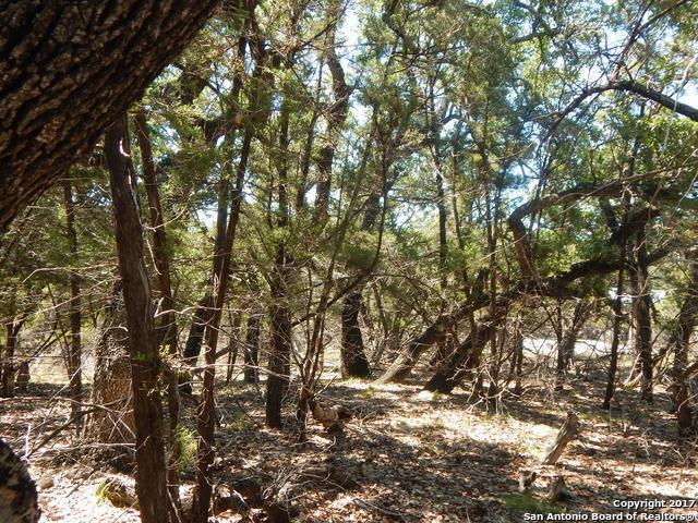295 Windmill Oaks Dr, Wimberley, TX 78676 (MLS #1276179) :: Magnolia Realty
