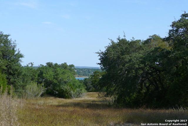 2118 Sierra Madre, Canyon Lake, TX 78133 (MLS #1276457) :: Exquisite Properties, LLC
