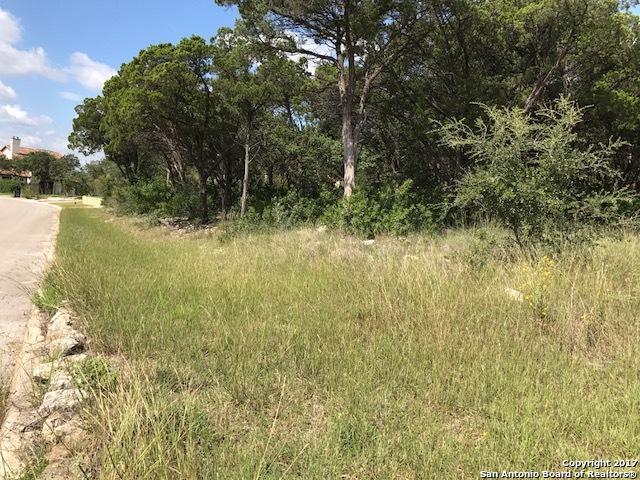 5911 Tejas Spg, San Antonio, TX 78257 (MLS #1276643) :: Magnolia Realty