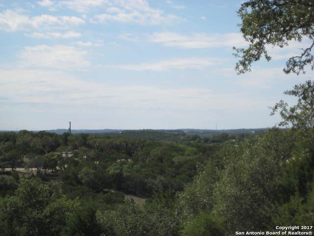 1651 Primrose Path, Canyon Lake, TX 78133 (MLS #1276780) :: Magnolia Realty